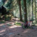 Curtis Amblava - Mountainbike