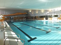 zwembadstvith
